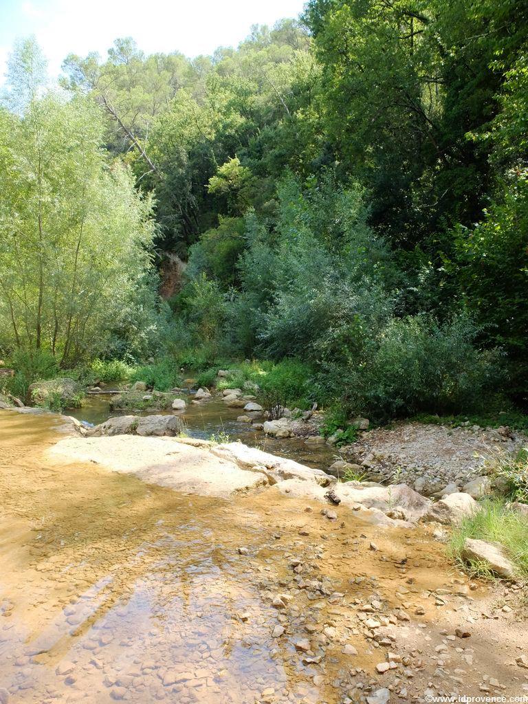Mountainbiken in der Provence - Warum nicht auf dem Weingut Chateau de Provence?