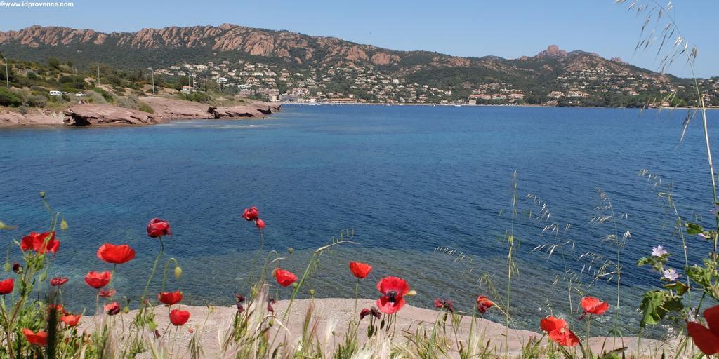 Corniche d'Or -Küstenstrasse zwischen Fréjus und Cannes mit dem Esterel Gebirge im Hintergrund