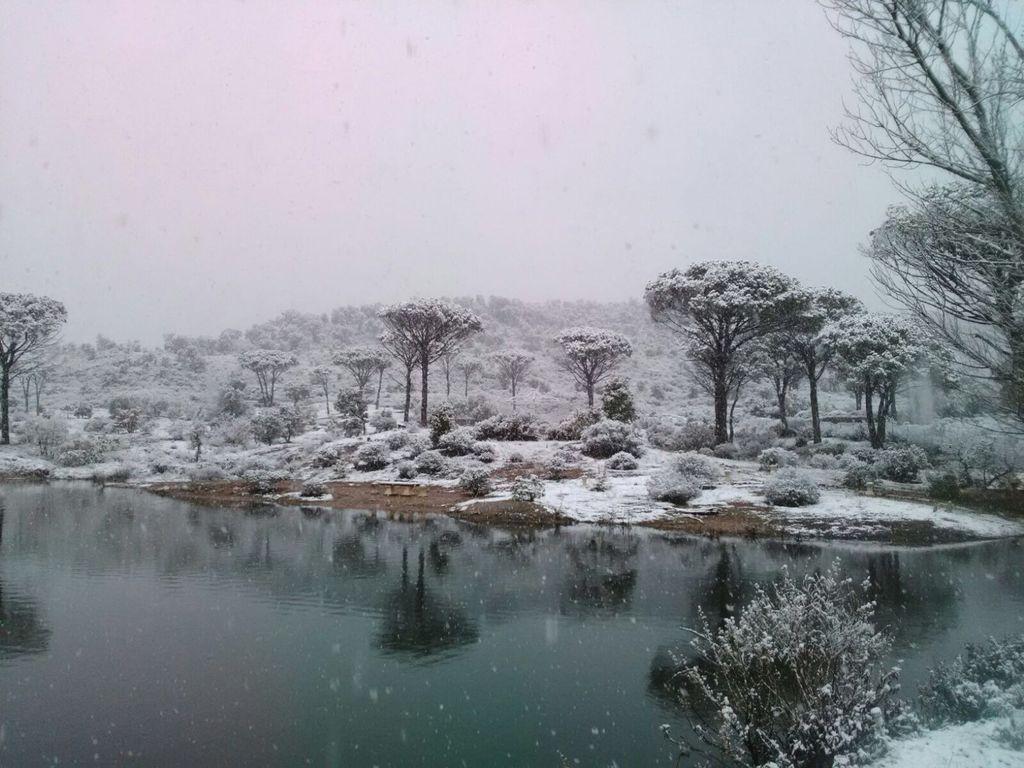 Provence im Schnee - Vidauban (VAR) 2018
